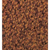 Colorstar Plush Golden Brown 4' x 8'