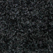 Colorstar Plush Black 2' x 3'