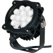 TCPI LDL16WBL01 Black 16W Spotlight with 15 degree beam