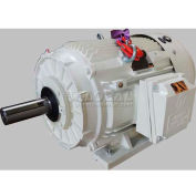 TechTop Oil Well Pump Motor BK3-CI-TF-256T-6-BR-G-10, 256T Frame, 10HP, 1200RPM, 6 Poles