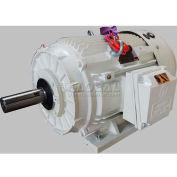 TechTop Oil Well Pump Motor BK3-CI-TF-324T-6-BR-G-25, 324T Frame, 25HP, 1200RPM, 6 Poles