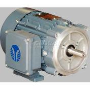 TechTop High Efficiency Motor BL3-AL-TF-56C-2-B-D-1, 56C Frame, 1HP, 3600RPM, 2 Poles