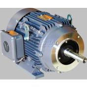 TechTop JM TEFC Enclosure Motor GA3-AL-TF-182JM-2-B-D-3, 182JM Frame, 3HP, 3600RPM, 2 Poles