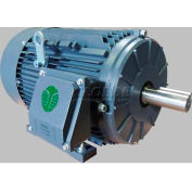 TechTop Premium Efficiency Motor GR3-AL-TF-143T-4-B-D-1, 143T Frame, 1HP, 1800RPM, 4 Poles