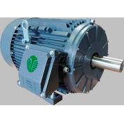 TechTop Premium Efficiency Motor GR3-AL-TF-145T-6-B-D-1, 145T Frame, 1HP, 1200RPM, 6 Poles
