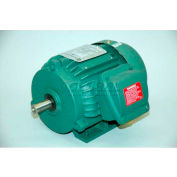 TechTop Premium Efficiency Motor GR3-CI-TF-143T-2-B-D-1, 143T Frame, 1HP, 3600RPM, 2 Poles