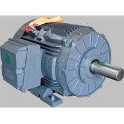 TechTop Premium Efficiency Motor GR3-CI-TF-404T-6-RR-D-60, 404T Frame, 60HP, 1200RPM, 6 Poles