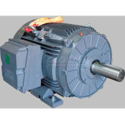 TechTop Premium Efficiency Motor GR3-CI-TF-444T-6-RR-D-100, 444T Frame, 100HP, 1200RPM, 6 Poles