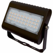 Straits 30180091 LED Flood Light, 50W, 4900 lumens, 5000K, Bronze