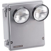 Emergi-Lite 12SV54M-2LG-D Steel Harsh Environment Lighting - 12V, 54W, 2- 4W LED MR16 Heads