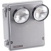 Emergi-Lite 12KSM110-2 Steel Harsh Environment Lighting - 12V 110W