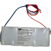 Emergi-Lite 850.0010-E Replacement Battery for TSC18-2