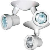 Emergi-Lite EF10(LG) Surface Mount Small Round Remote Fixture - 12V, 4W MR16 LED, 0ff White