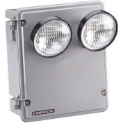 Emergi-Lite KSC18-2-F Harsh Environment Lighting - 6V 18W