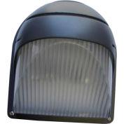 Emergi-Lite LITE-2(MI)-BZ Indoor Outdoor Remote Fixture - 6V 6W