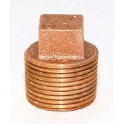 "Trenton Pipe LF77040 4"" Square Head Plug, Lead-Free Cast Bronze"