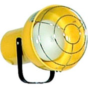 TPI Incandescent Replacement Light Head