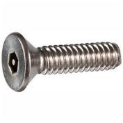 "10-32 x 3/8"" Security Machine Screw - Flat Hex Socket Head - Alloy Steel - Black Oxide - FT - 100 Pk"
