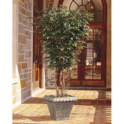 OfficeScapesDirect 8' Executive Ficus Silk Tree