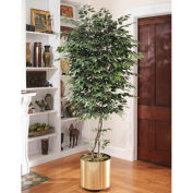 OfficeScapesDirect 7' Trim Ficus Silk Tree