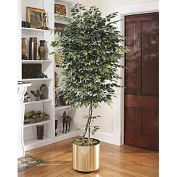OfficeScapesDirect 8' Trim Ficus Silk Tree