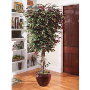 OfficeScapesDirect 7' Executive Capensia Silk Tree