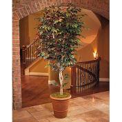 OfficeScapesDirect 8' Trim Capensia Silk Tree