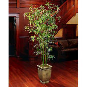 OfficeScapesDirect 7.5' Asian Bamboo Silk Tree