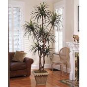 OfficeScapesDirect 7' Dracaena Silk Tree