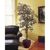 OfficeScapesDirect 7' Japanese Maple Silk Tree