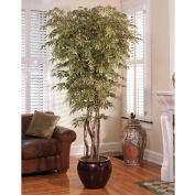 OfficeScapesDirect 7' Executive Japanese Maple Silk Tree