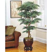 OfficeScapesDirect 7' Pagoda Ming Aralia Silk Tree