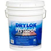 DRYLOK® Latex Base WetLook High Gloss Sealer 5 Gallon - 28915