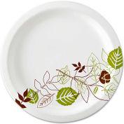 """Dixie® UX9WS, Pathways Paper Plates, 8-1/2"""" Dia., Green/Burg/Wht, 500/Carton"""
