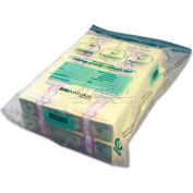 MMF Industries 234400120 Twin Deposit Cash Bags, 9-1/2 x 15, Clear, 100/Pack