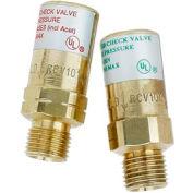 "Set Of Regulator Check Valves - 9/16"" (B) Fitting - Pkg Qty 2"