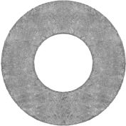 """Ring Flexible Graphite Flange Gasket for 1"""" Pipe-1/16"""" Thick - Class 150"""