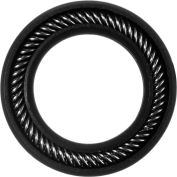 "Graphite Filled PTFE Spring Energized Rod Seal for .75"" Rod or 1"" Piston Bore"
