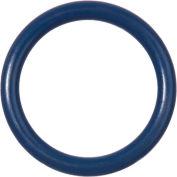 Metal Detectable Viton O-Ring-Dash 021 - Pack of 10