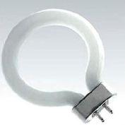 Ushio 3000127 FCB74LWW, Fluorescent Bulb, T4, 6 Watts, 2000 Hours
