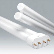 Ushio 3000412 Cf-L40se/835, Single Tube, 40 Watts, 12000 Hours- Cfl Bulb - Pkg Qty 10