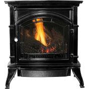 Ashley Vent Free Natural Gas Stove AGC500VFBN, Black Enameled Porcelain Cast Iron, 31000 BTU