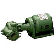 Inline Cast Iron Circulator 1/8Hp