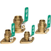 "Shut Off Flange Kit, 1-1/4"" Npt (0012)"