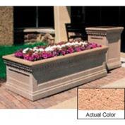 Wausau TF4239 Rectangular Outdoor Planter - Weatherstone Cream 48x24x20