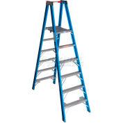 Werner 6' Type 1 Fiberglass Platform Ladder PT6006