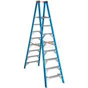 Werner 8' Type 1 Fiberglass Platform Ladder PT6008