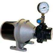 Webster® SPM Series Two Stage Pump SPM-30-1, 120v,60cy, 1 phase