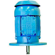 WEG P-Base Motor, 00156EP3E143HP, 1.5 HP, 3600 RPM, 230/460 Volts, TEFC, 3 PH