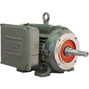 WEG Close-Coupled Pump Motor-Type JM, 00156ES1E143JM, 1.5 HP, 3600 RPM, 208-230/460 V, TEFC, 1 PH